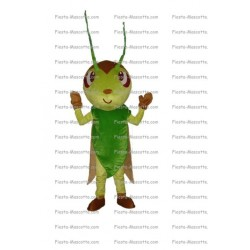 mascotte-Insecte
