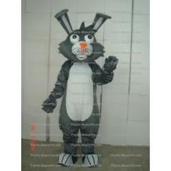 mascotte-Lapin
