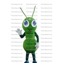 mascotte-Emirat-Arabe