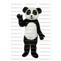 mascotte-Panda