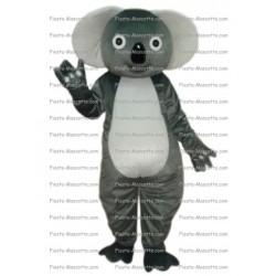 mascotte-Koala