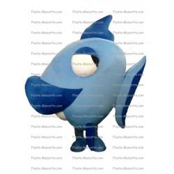 mascotte-Poisson